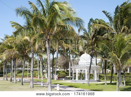 The wooden gazebo surrounded by palms in Freeport town on Grand Bahama Island.