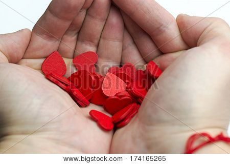 Hands holding a lot of hearts on a white background.