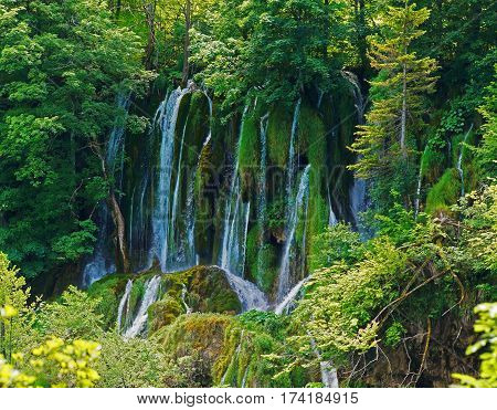 a waterfall in a green forest divided into small trickles