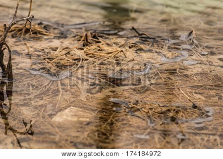 Water polluted with residuals from cooper mine,Geamana ,Romania