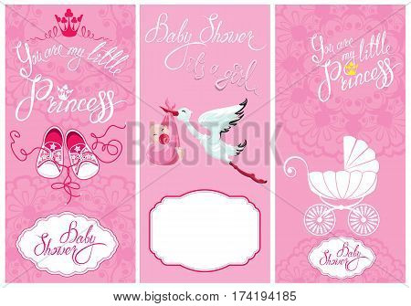 Baby girl Shower Set. Party Decoration Scrapbook invitation card. Calligraphic text You are my little princess frames. Vintage elements for invitation card flyer etc.