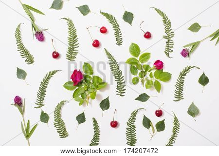 Pattern of green blades of grass with purple flowers leaves birch twigs rose with red flowers green ferns ripe cherries lie on a white background. Flat lay top view