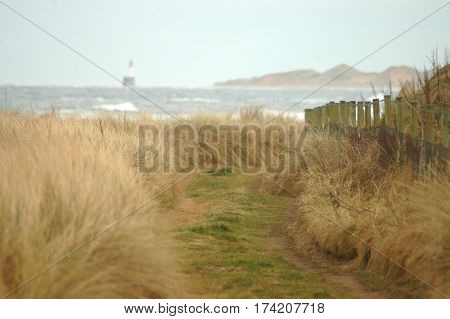 Coastal path leading to sea with distant lighthouse and sand dunes on the horizon.