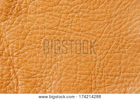 Genuine leather surface, of the background grunge texture. For natural, artisan backgrounds, backdrop, substrate composition use, vintage design