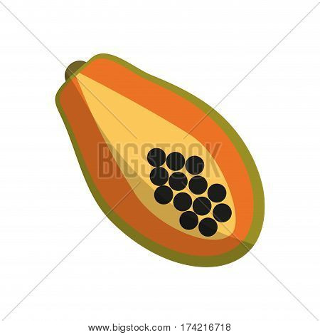 paw paw fruit icon over white background. colorful design. vector illustration