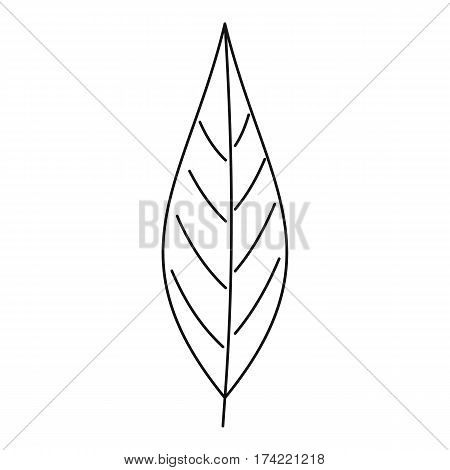 Birch leaf icon. Outline illustration of birch leaf vector icon for web