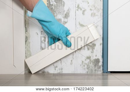 Close-up Of A Person Hand Placing Tiles On Moldy Wall At Home