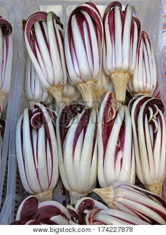 Box With A Lot Of Typical Radicchio Of Treviso In The Italy Of T
