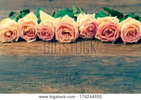 Pink roses on wooden background with copyspace.
