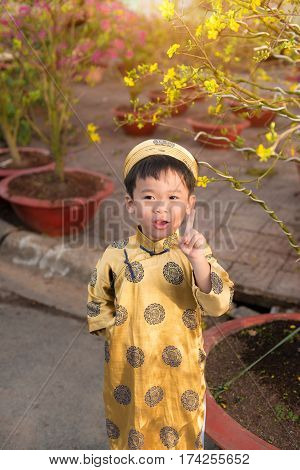 Happy kid having fun with traditional dress (ao dai) in Ochna Integerrima (Hoa Mai) garden. Hoa Mai flower is used for decoration in lunar new year in Vietnam. Tet holiday.