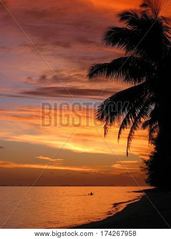 sunset scene with palm trees and canoeist at Rarotonga, Cook Islands