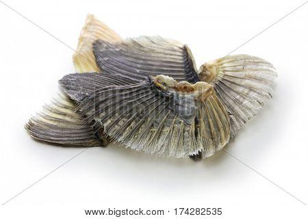 Dried blowfish fins for Hirezake (Japanese hot sake drink ).
