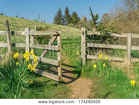 Hiking trail through gate door doorway and flowers. Road to success and new ideas. New life, new hope, breakout, break through, breakthroughs