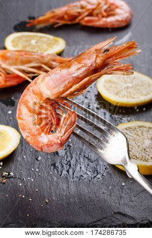 Red argentine shrimps (head on) on fork