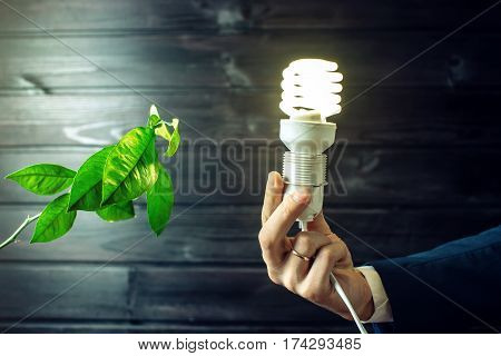 Hand Holding Light Bulb Next To The Green Tree