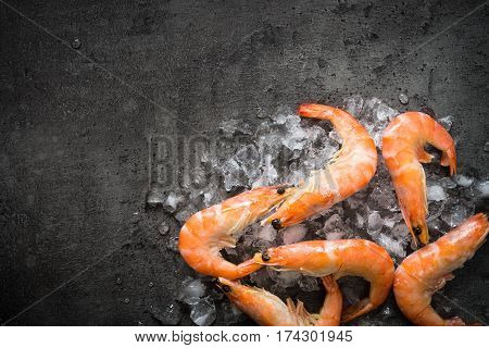 Fresh Prawns Shrimps in ice on black background. Top view copy space. Food background.