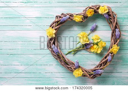 Big decorative heart and bright spring flowers on turquoise wooden background. Selective focus. Flat lay. Place for text.