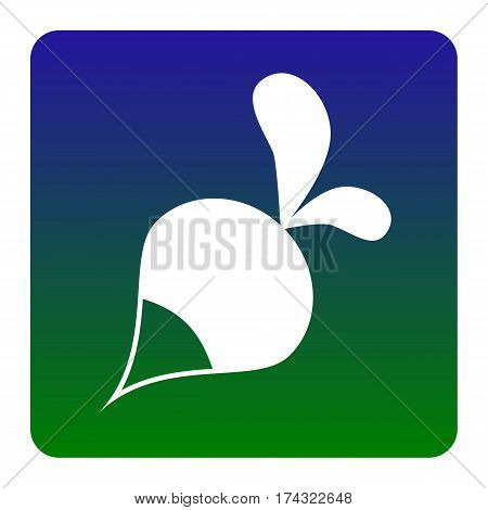 Radish simple sign. Vector. White icon at green-blue gradient square with rounded corners on white background. Isolated.
