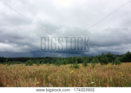 Thunderclouds, Forest And Field, Natural Scenery