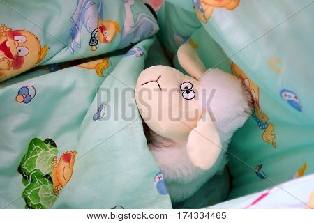 Funny toy sheep with big ears went to sleep under the covers