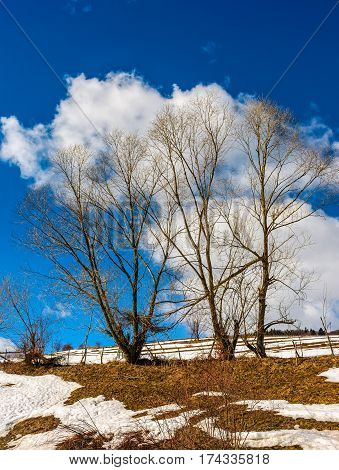 spring has come. last days of winter landscape.