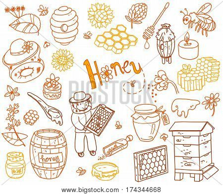 Vector honey element doodle set with beehive, beekeeper, flowers, pollen, bee, hive and ready product. Outline cute cartoon illustration