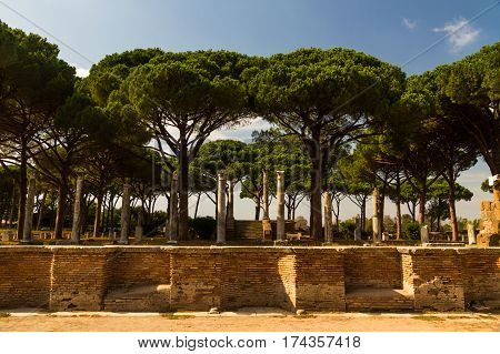 Roman pillars and ruins at Ostia Antica roman city. Stone pine or Pinus pinea tree in background Rome in Italy.