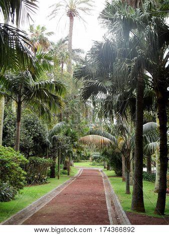 Botanical garden of Ponta Delgada, Sao Miguel, Azores, Portugal