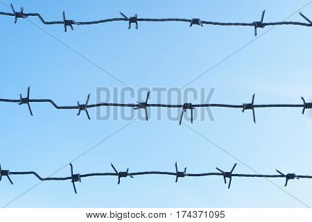 lines barbed wire. focus with shallow depth of field. close-up