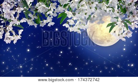 Beautiful spring night in the cherry orchard. The stars and the moon on a dark blue night sky. Romance. Relax. Lovely season