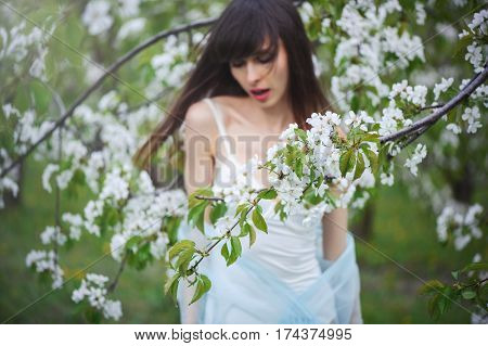 Woman  In A Cherry Garden
