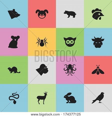 Set Of 16 Editable Zoology Icons. Includes Symbols Such As Arachind, Bunny, Honey And More. Can Be Used For Web, Mobile, UI And Infographic Design.
