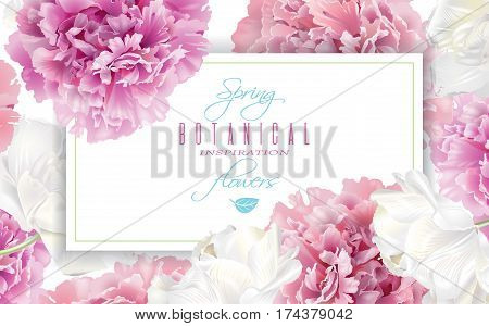 Vector horizontal banner with pink peony and white tulip flowers on white background. Romantic design for natural cosmetics, perfume, women products. Can be used as greeting card or wedding invitation
