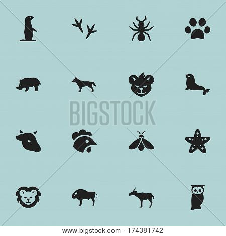Set Of 16 Editable Zoology Icons. Includes Symbols Such As Gazelle, Forepaw, Bison And More. Can Be Used For Web, Mobile, UI And Infographic Design.