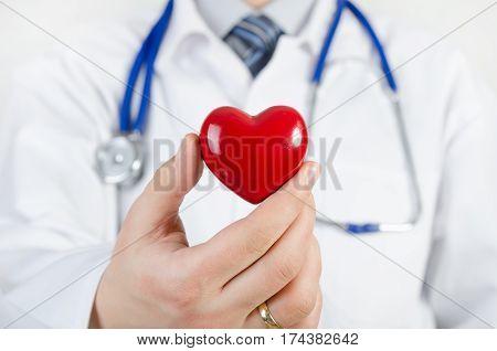 Cardiologist Holding Heart 3D Model
