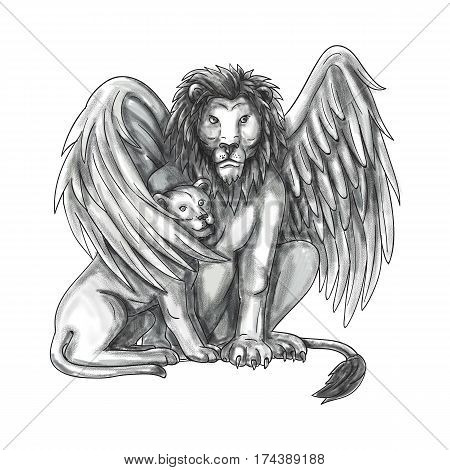 Tattoo style illustration of a winged lion a mythological creature that resembles a lion with bird-like wings protecting its cub by putting it under it's wing set on isolated white background viewed from front.