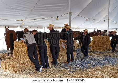STRASBURG PENNSYLVANIA - February 25, 2017: Amish volunteers check records on horses for sale at the annual spring sale