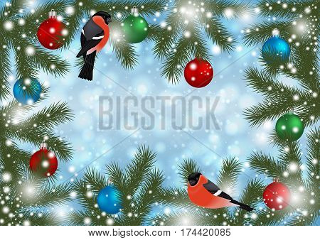 Illustration of Christmas or New Year decoration with bullfinch bird balls fir tree branches and snowflake background