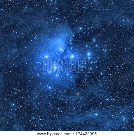 Pleiades star cluster in the constellation of Bull.