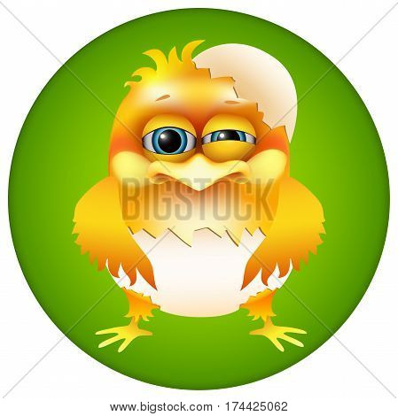 cute cartoon chick in eggshell on green background