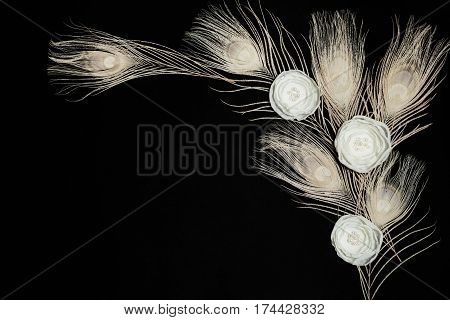 Black Dark Retangular Horizontal Background With Handmade Gentle White Ranunculus Flowers and Peacock Feathers, Lying Flat, Top View. Have an Empty Place For Your Text.
