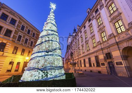 Christmas tree on University Square in Wrocław at night. Wroclaw Lower Silesian Poland.