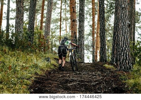 male cyclist mountainbiker walk climbs uphill on roots trees