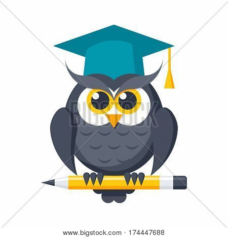 Wisdom or knowledge concept with owl in graduation cap