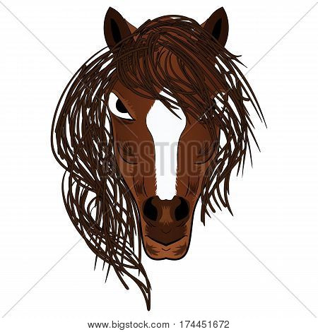 Vector illustration fierce looking brown stallion horse with a flowing mane