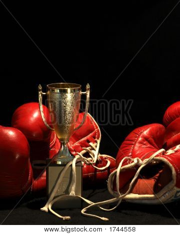 Boxing Gloves And A Golden Cup
