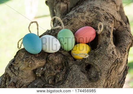 Decorative colorful Easter eggs on twine in tree hollow holiday concept authentic natural style closeup soft daylight
