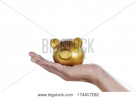 gold piggy bank in hand woman isolated on white background File contains a clipping path.