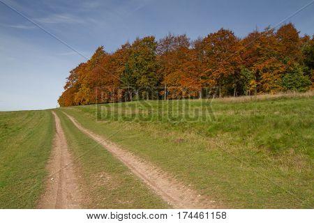 Walking the Ridgeway near West Ilsley, Berkshire