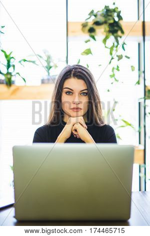 Portrait of attractive business woman sitting at sofa and working at laptop online.